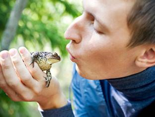 целовать жабу - под запретом